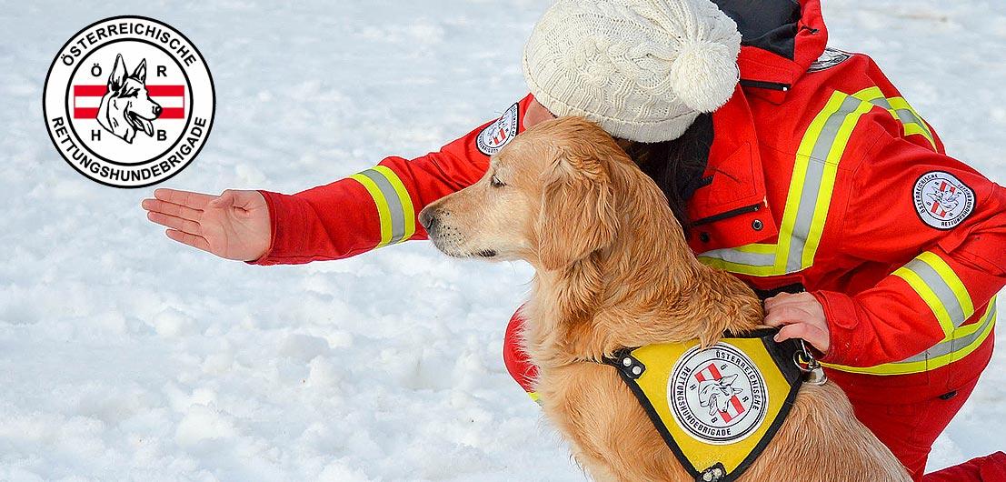 ÖRHB: Jetzt Rettungshunde-Pate werden und Leben retten!